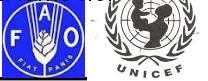 UNIFAM, UNICEF, FAO, UNESCO, SAVE THE CHILDREN, CARE, Programma mondiale per il cibo delle Nazioni Unite-WFP Oxfam, FAO o Food band Agriculture Organization. Organizzazione per l'alimentazione e l'agricoltura, Istituto specializzato dell'organizzazione delle nazione Unite(ONU) queste organizzazioni hanno il compito di combattere la fame nel mondo.