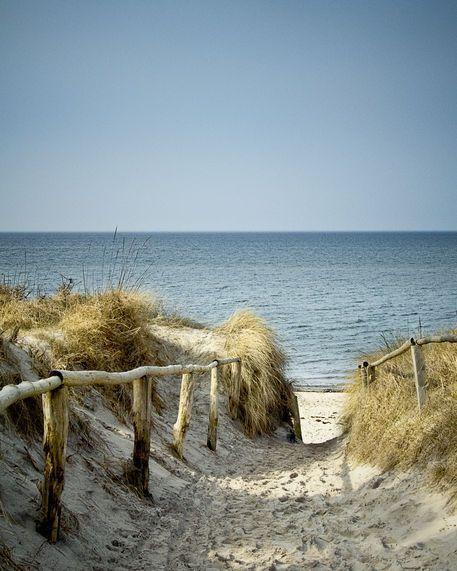 """""""An der Ostsee bei Zingst führt ein Pfad durch die Dünen zum Strand, im Hintergrund das ruhige, weite Meer."""" Michael Dmoch"""