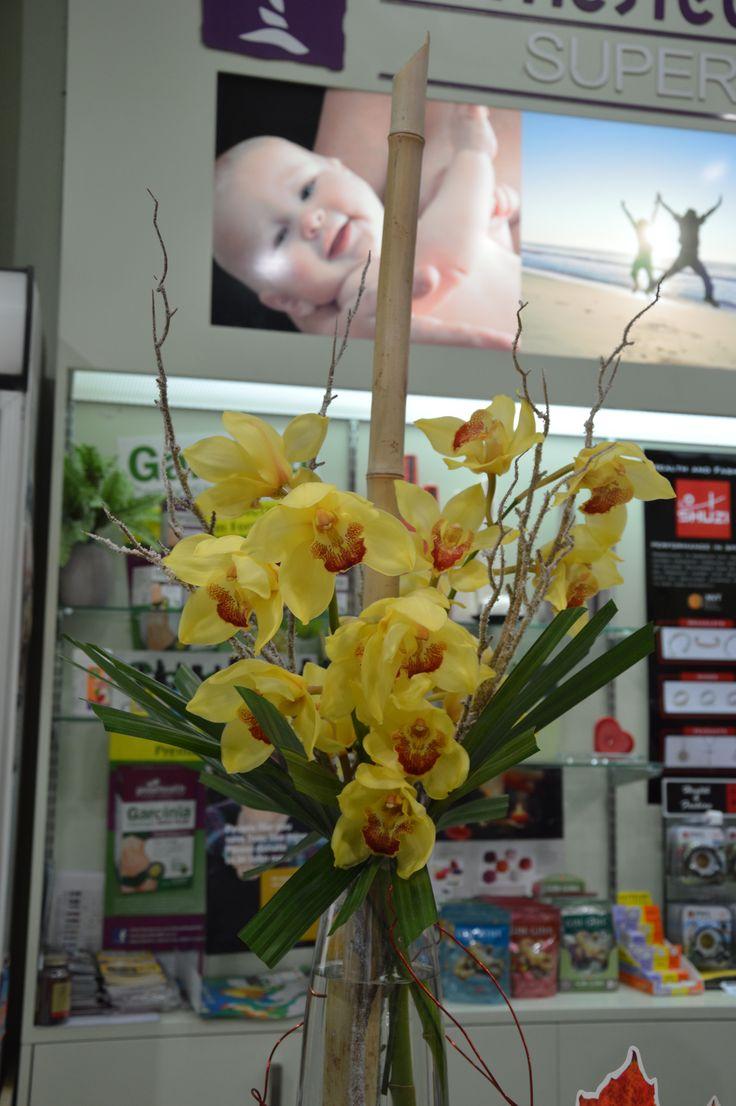 Bamboo , Yellow Cymbidium Orchids