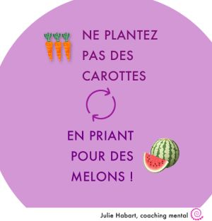 Ne plantez pas des carottes en priant pour des melons - http://tinoa.com/coaching/2016-annee-heureuse/