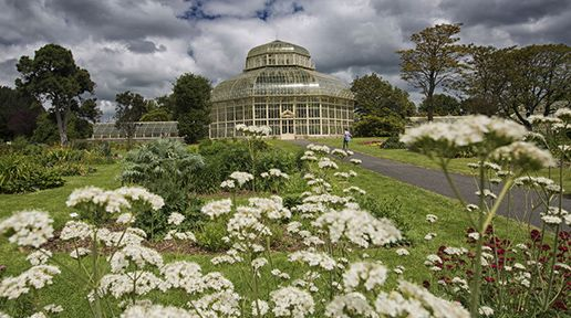 National Botanic Gardens. North Dublin tourist attractions collaborate to form the city's DNA trail.
