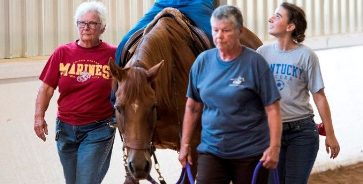 Equine therapy successful in helping Veterans with chronic aphasia communicate better  https://www.blogs.va.gov/VAntage/40739/equine-therapy-successful-in-helping-veterans-with-chronic-aphasia-communicate-better/?utm_content=buffereb22d&utm_medium=social&utm_source=pinterest.com&utm_campaign=buffer