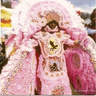 Mardi Gras IndianPink Mardi, Orleans Louisiana, Indian Tribes, Gras Funk, Wild Magnolias, Real Pretty, Mardi Gras, Gras Costumes, Gras Indian