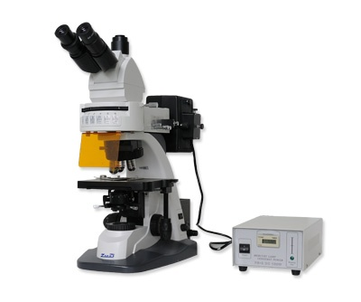 Microscopio Epi-fluorescencia 158/358 con oculares WF10x/20, Objetivos Plano apo-cromáticos de fluorescencia 4x, 10x, 40x (R), 100x (R), Platina mecánica de doble lecho 180x160 mm; desplazamiento 80x50 mm, Condensador Abbe AN: 1.25, con lente condensadora deslizable, Iluminación tipo Köehler con diafragmas de campo y apertura, Lámpara de alta presión de mercurio 220 V, 100 W(Epi-fluorescencia, Lámpara halógena 12 V, 50 W Transmitida.