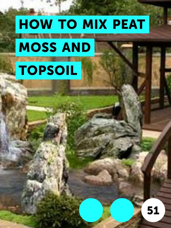How To Mix Peat Moss And Topsoil When To Plant Vegetables Planting Grass Seed Planting Grass