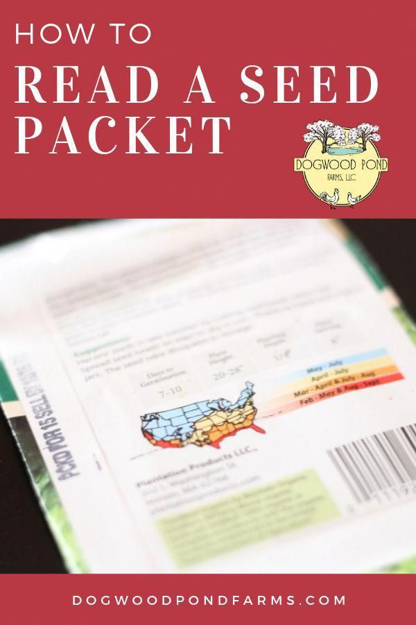 Ever wondered what all the information on the back of a seed package meant?  Eas…