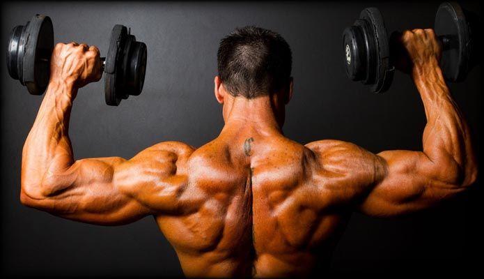Egzersizin kas üzerine etkisi