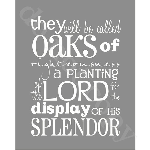 I love this verse and pray my life can be like an old oak tree that reflects God's splendor. Oaks of Righteousness Gray 8x10 Isaiah 613 by BlossomAndVine, $8.50