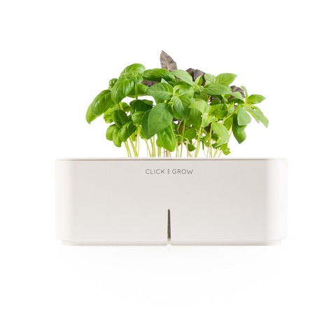 """Click-and-Grow"" - electronic smartpot fully equipped with a basil seed plant cartridge, watering and fertilizing system, and special software that measures and provides exactly what the little greenling needs at all times!"