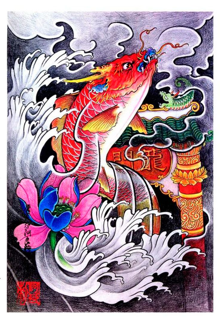 67 best images about koi tattoo designs on pinterest for Japanese koi fish artwork