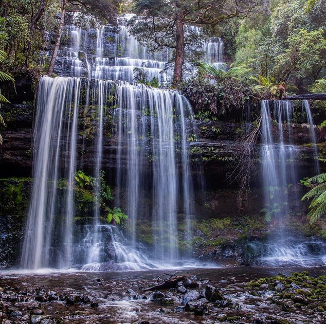 Russel Falls The Absolute BEST Things to do in Tasmania (top 50)