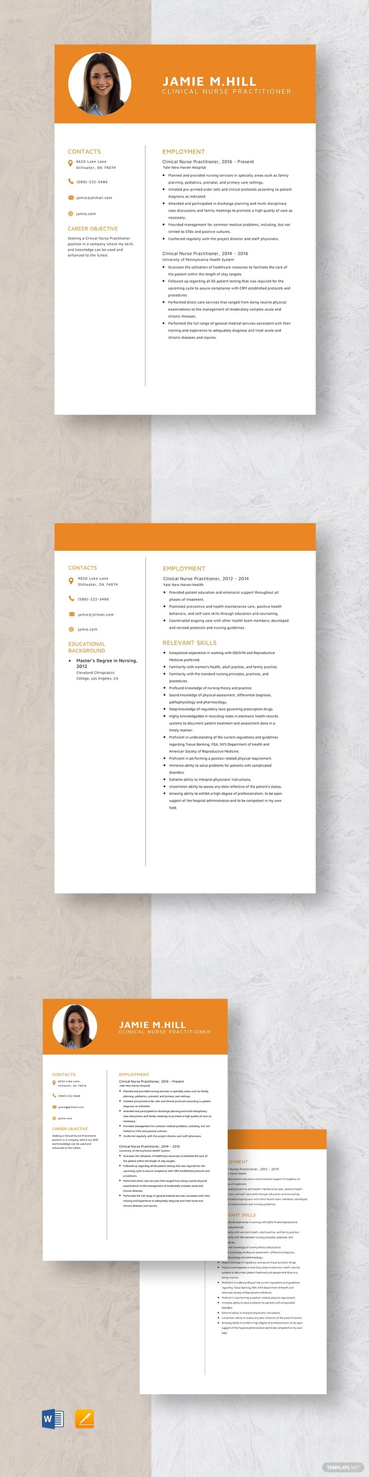 Clinical nurse practitioner resume template ad paid