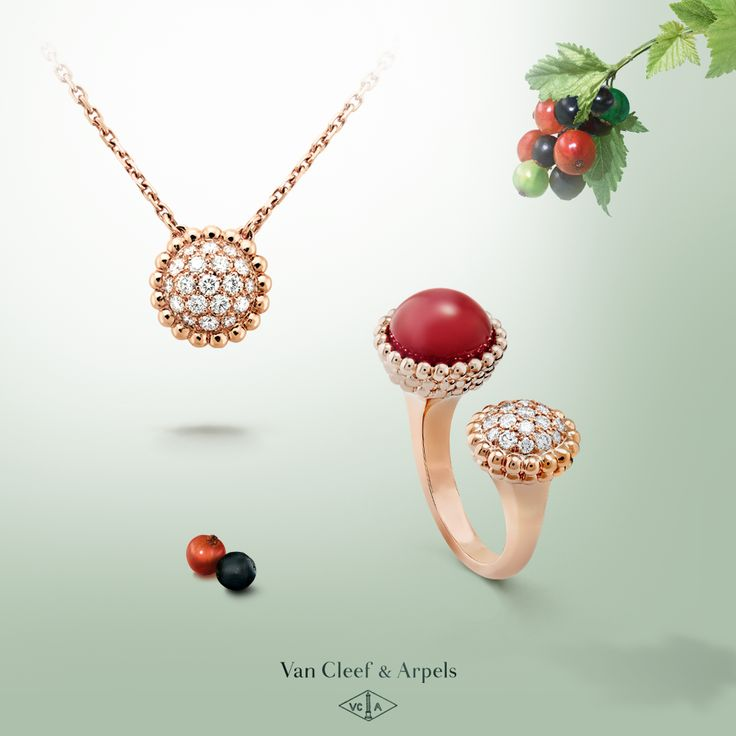 Look! The delicious berry has turned into a delicate carnelian beauty. #ChasingPerlee #VCAPerlee