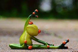 Iré al gimnasio cuando las ranas practiquen Yoga...  #CambioDeChip