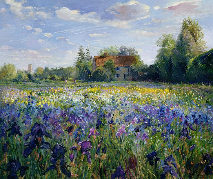 Evening At The Iris Field Painting by Timothy Easton - Evening At The Iris Field Fine Art Prints and Posters for Sale