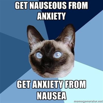 Chronic illness cat...you truly understand me!
