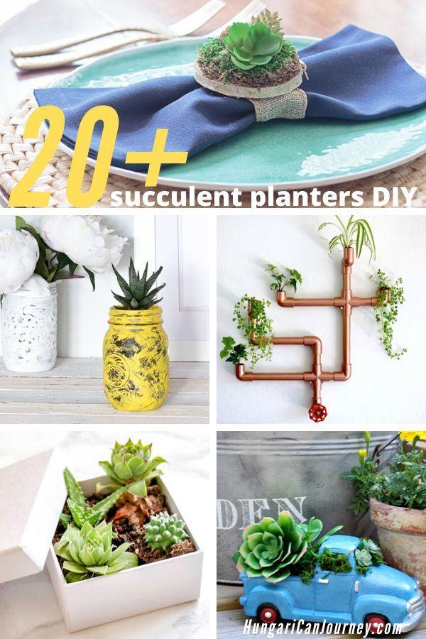 29 Cutest Planter Ideas For Succulents Planters Succulents Diy