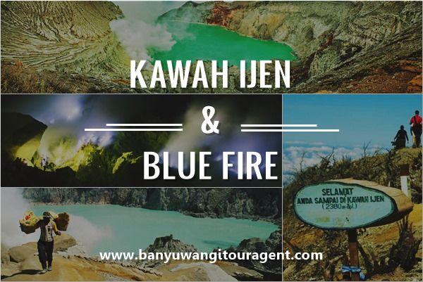 Kawah Ijen dan Blue fire gunung Ijen Banyuwangi merupakan suatu fenomena unik wisata gunung di Jawa Timur. Info selengkapnya baca disini
