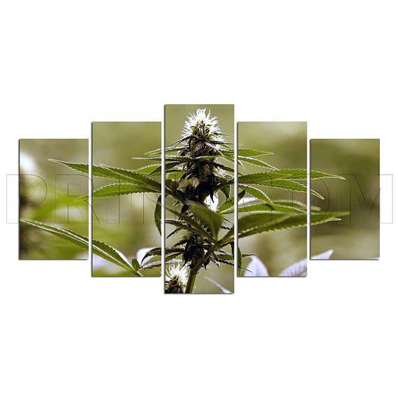 Cannabis Marijuana Plant Psychoactive Drug Canvas Print Gift 5