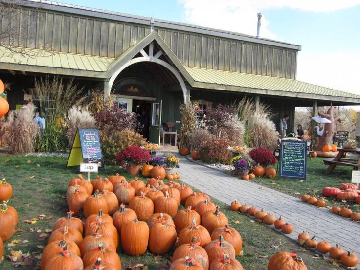 Days Out Ontario | Birtch Farms and Estate Winery, Woodstock, Ontario