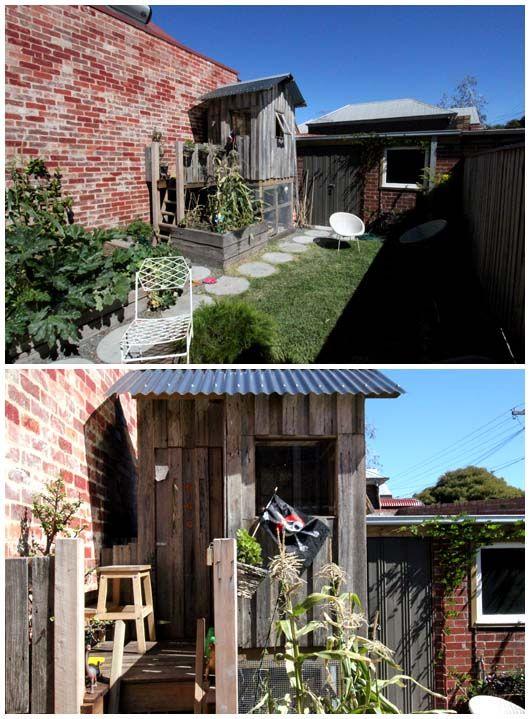 Beci Orpin's backyard