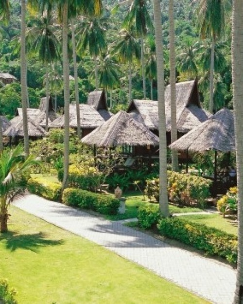 Phi Phi Beach Bungalows: Best 25+ Phi Phi Island Ideas On Pinterest