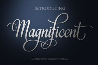 http://Magnificent is a handwritten font with beautiful swashes. It features fluid characters.