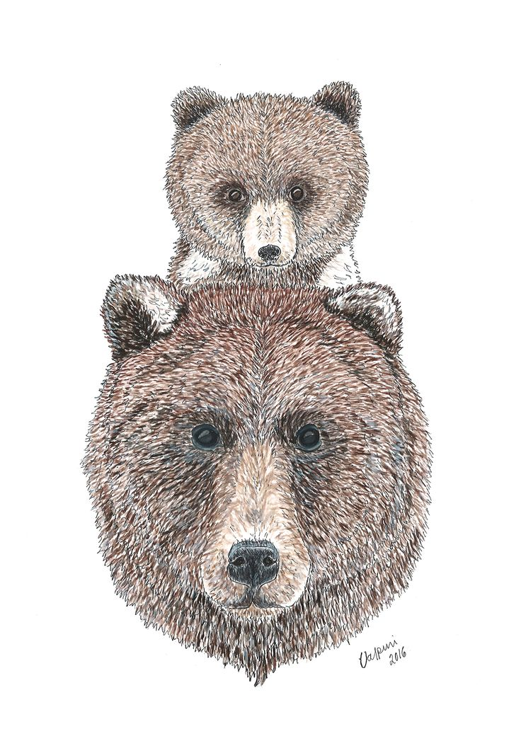 Always Together Ink drawing and Aquarelle by Valpuri. Bear mother and bear cub