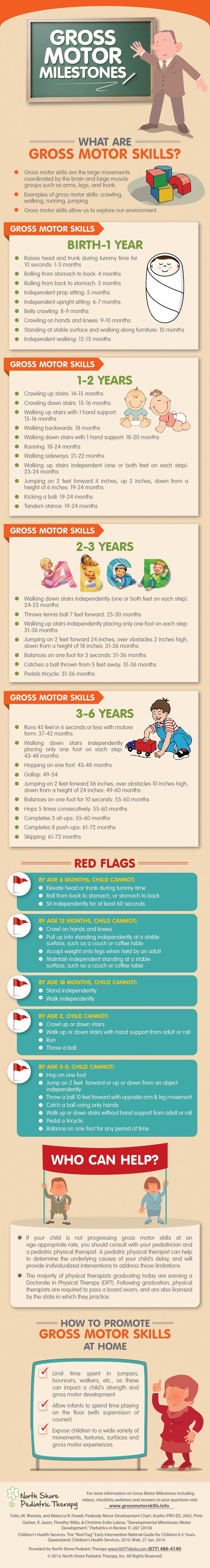 What are the Gross Motor Milestones for children birth to 6 years old?