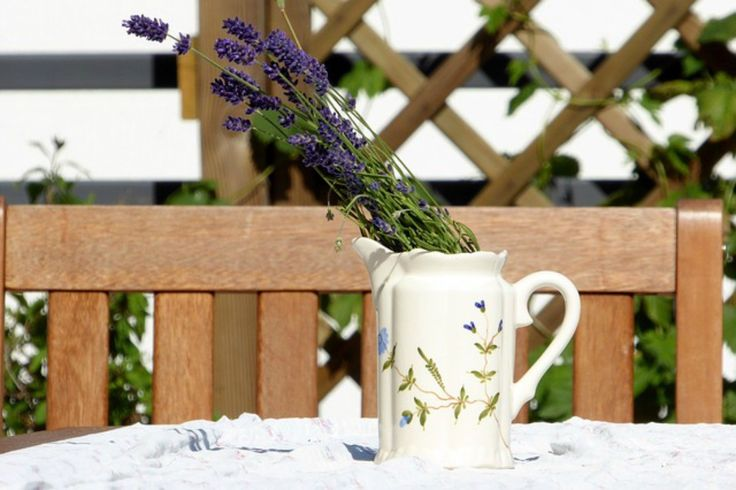 THE BENEFITS OF LAVENDER IN THE FAMILY HOME