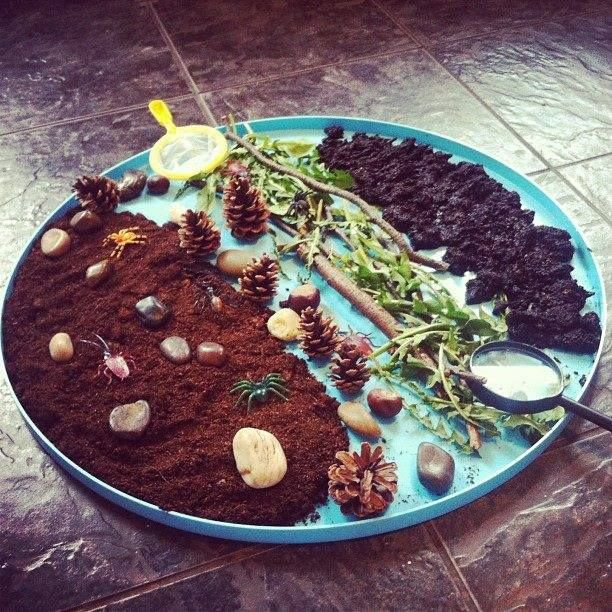 "Small world forest in a tray from Ellie's Mummy, using mud, soil, leaves, twigs, pinecones, pebbles & mini beasts ("",)"