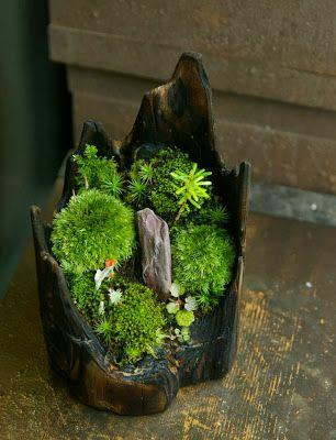 1000 id es sur le th me jardin japonais miniature sur pinterest jardins japonais faire un for Idee jardin japonais miniature