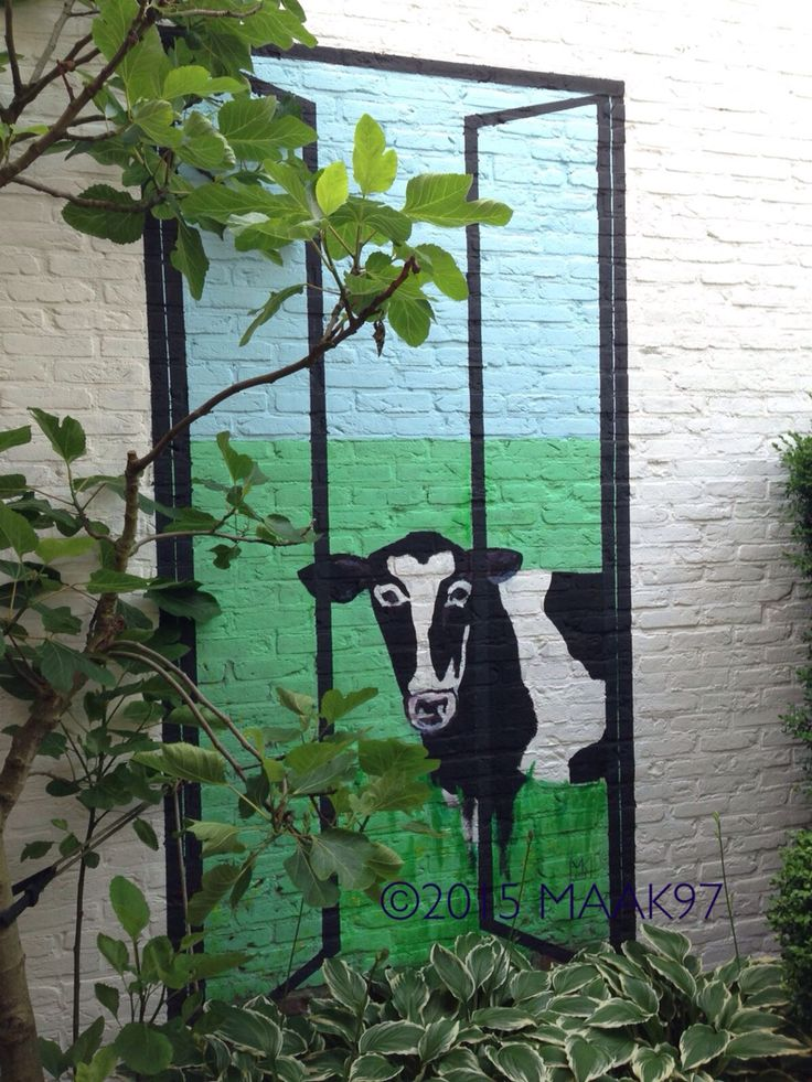 Cow 1 Wallpainting Ca 150x220 cm