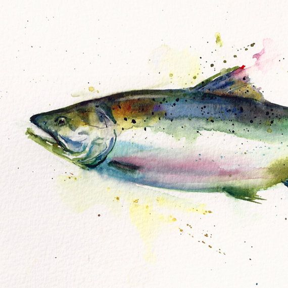 SALMON Original Fish Watercolor Painting by Dean by DeanCrouserArt, $110.00