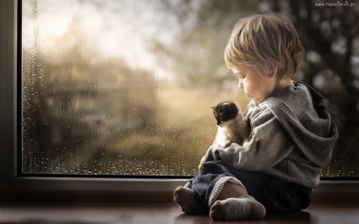 Chłopczyk, Mały, Kotek, Przyjaźń, Okno, Deszcz