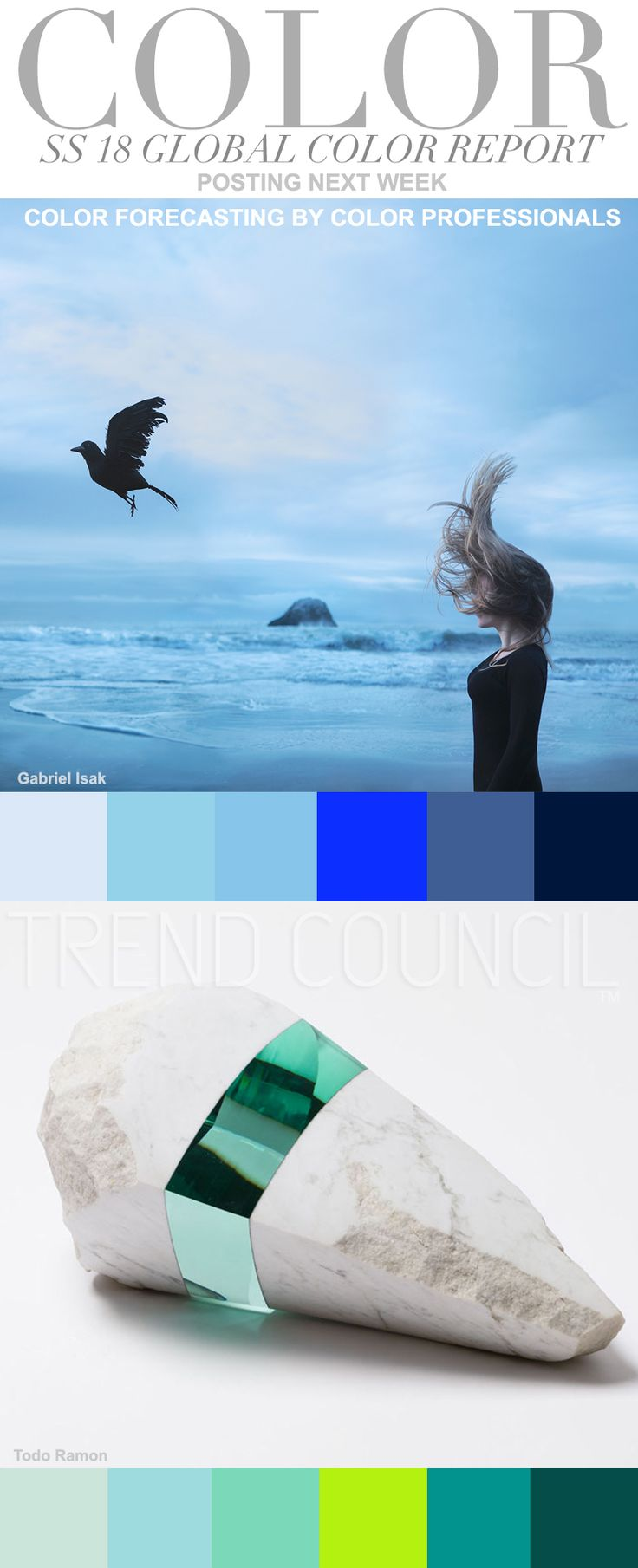 20 Trends Color For Living Rooms 2017: Best 25+ Trend Council Ideas On Pinterest