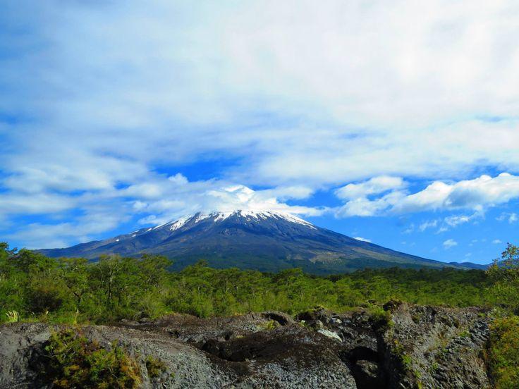 Volcan Osorno, desde el Parque Vicente Perez Rosales, en Puerto Varas.