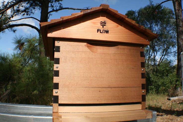 Flow Hive Photo Review (MAHAKOBEES) www.youtube.com/mahakobees
