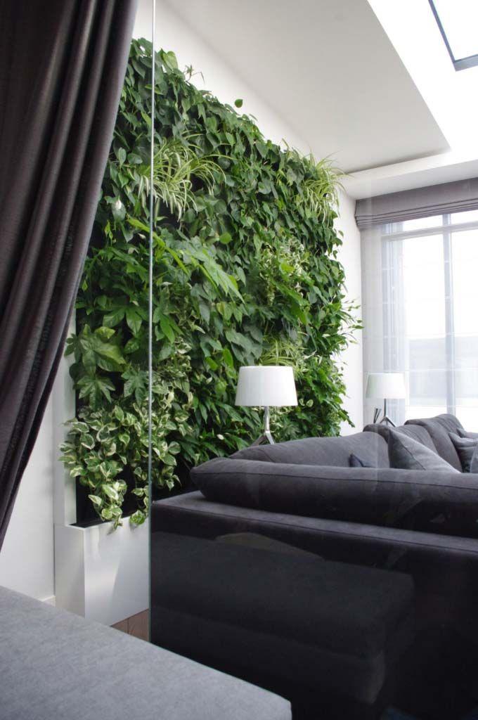 Zielone ściany Z żywych Roślin Plant Wall Home Garden Inspiration