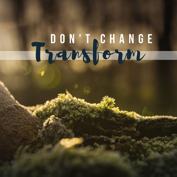 Don't change, T | R | A | N | S | F | O | R | M   When the stakes were high, the wilderness was one of God's favorite instruments to make sure that permanent community transformation took place. #retreat #wilderness #adventure #seekhim #jesus #christian #hunting #outdoors #camping #hiking #fishing #faith #smallgroup #churchgroup #journey #church #pastor #change #fellowship #praise #worship #fellowship #nature #godsplan #godscreation #quote #instaquote #transformation #woods #transform