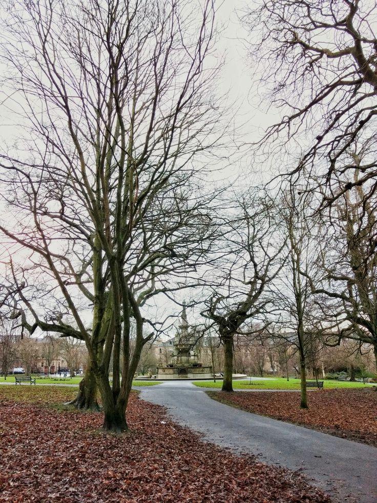Шотландия Глазго Scotland Glasgow nature Kelvingrove park scottish winter @NatashaMcMahon