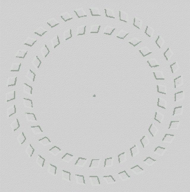 Imagem autocinética .Olhe fixamente somente para o ponto no meio, e aproxime a cabeça na imagem, Seu córtex visual vai enxergar movimento em uma imagem estática pois ele esta projetado para isso localizar movimentos e esta imagem foi desenvolvida afim de enganar nosso córtex visual, imagine o tanto de ilusão de óptica que vemos sem se dar conta.