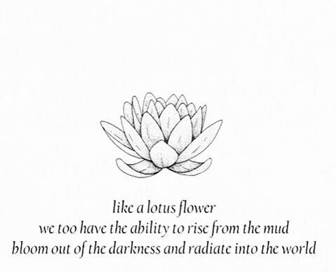 Like a lotus flower