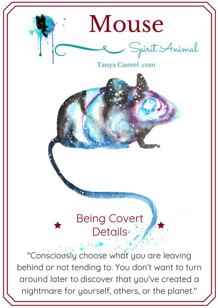 Mouse symbolism and Galaxy watercolor paintings by Tanya Casteel #mouse  #symbolism #meaning #art #w… | Animal spirit guides, Spirit animal meaning,  Animal meanings