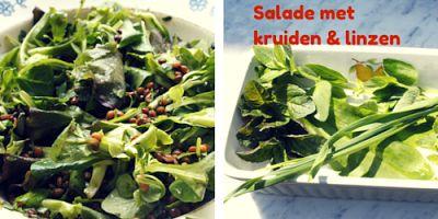 Irene kookt: Gemengde salade met groene kruiden en linzen