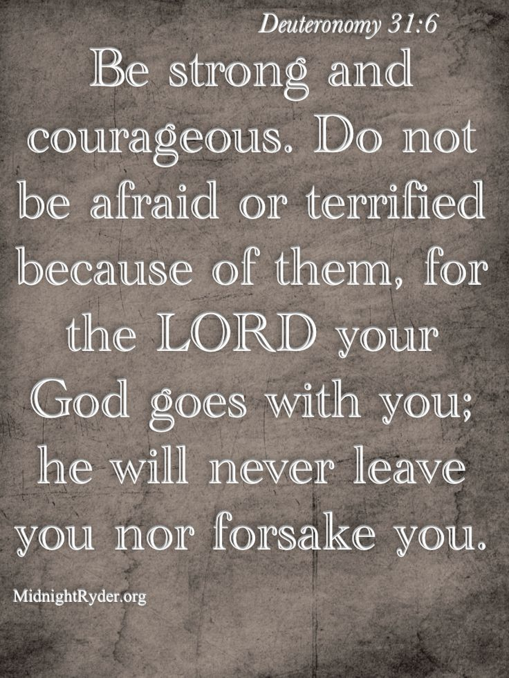 The KJV:  Deuteronomy 31:6  Be strong and of a good courage, fear not, nor be afraid of them: for the LORD thy God, he it is that doth go with thee; he will not fail thee, nor forsake thee.....this is how I feel about the gun laws, president election, school shootings, and everything else in my life now and whats to come! The Lord will protect and keep His children safe and thats His promise!!