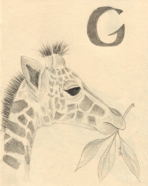 Giraffe and the letter G