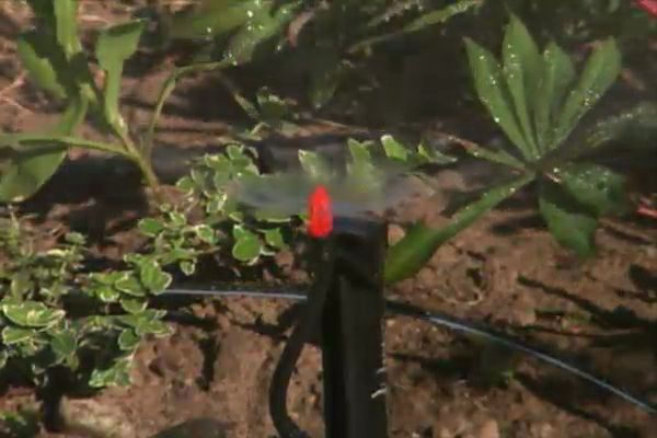 How to Install an Automatic Irrigation System