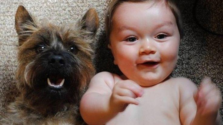 16 самых умилительных фото щенят и маленьких детей