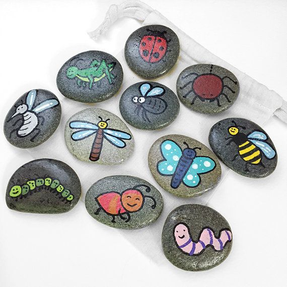 Hey, I found this really awesome Etsy listing at https://www.etsy.com/listing/227382857/bugs-insects-and-creepy-crawlies-themed